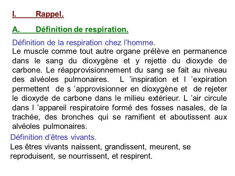 I.Rappel. A.Définition de respiration. Définition de la respiration chez lhomme. Le muscle comme tout autre organe prélève en permanence dans le sang