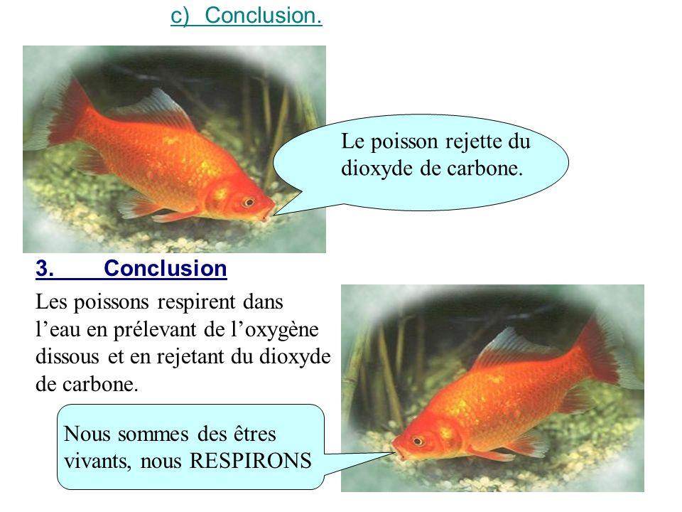 c)Conclusion. Le poisson rejette du dioxyde de carbone. 3.Conclusion Les poissons respirent dans leau en prélevant de loxygène dissous et en rejetant
