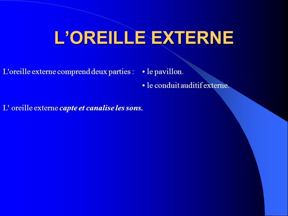 LOREILLE EXTERNE L'oreille externe comprend deux parties : le pavillon. le conduit auditif externe. L' oreille externe capte et canalise les sons.