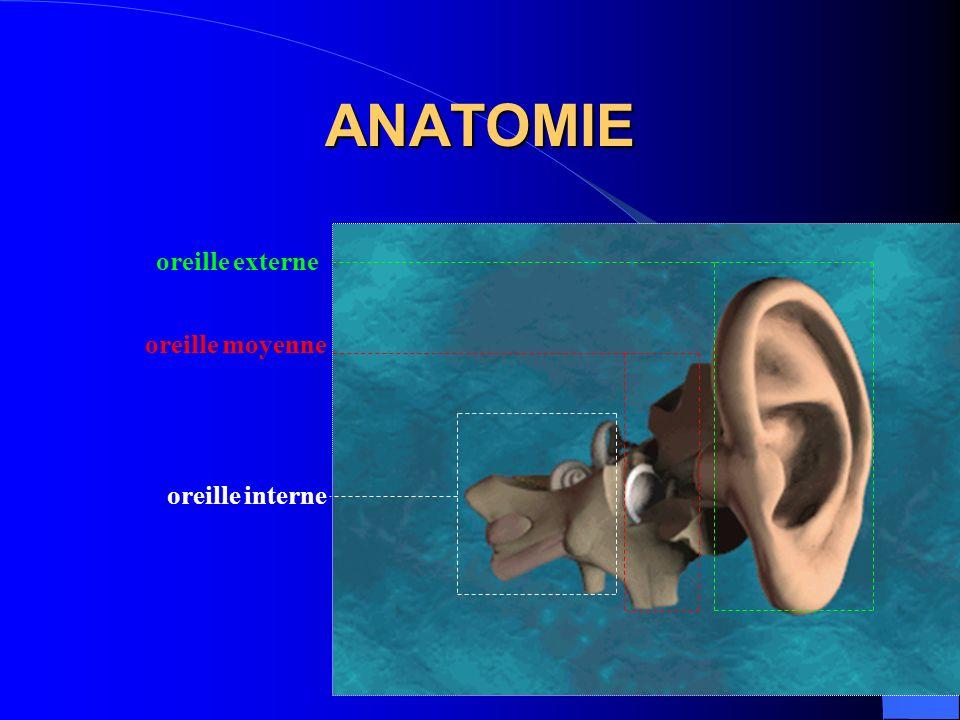 ANATOMIE oreille interne oreille moyenne oreille externe