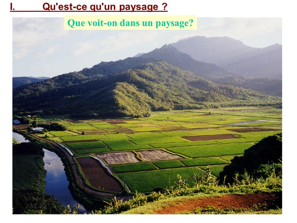 Que voit-on dans un paysage? I. Qu'est-ce qu'un paysage ?