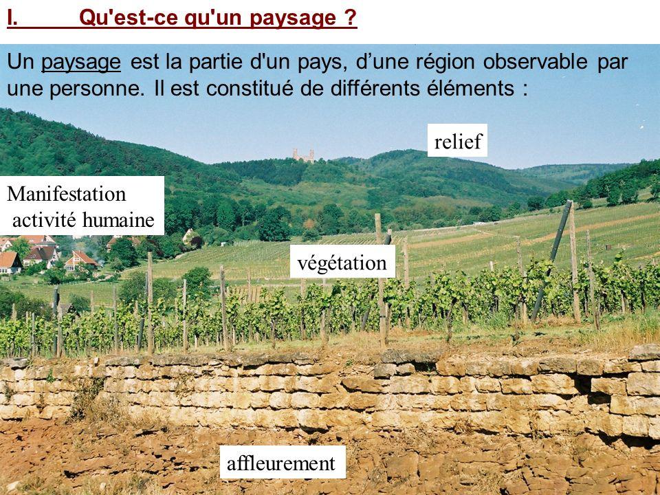 Un paysage est la partie d'un pays, dune région observable par une personne. Il est constitué de différents éléments : relief affleurement végétation