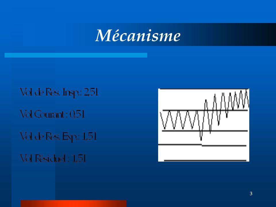 3 Mécanisme