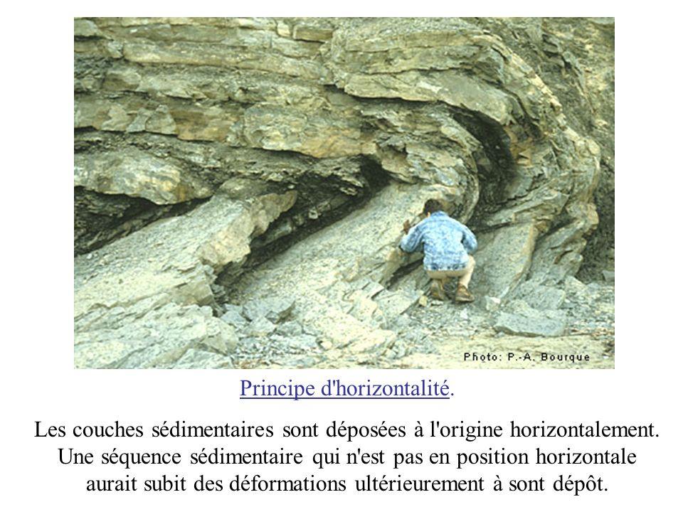 Principe d'horizontalité. Les couches sédimentaires sont déposées à l'origine horizontalement. Une séquence sédimentaire qui n'est pas en position hor