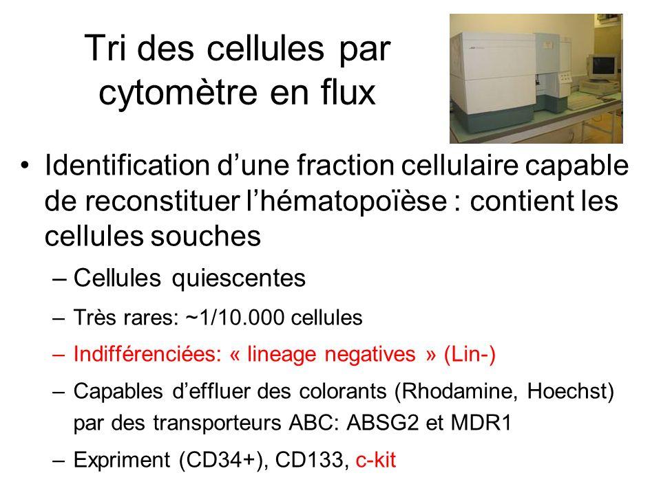 Tri des cellules par cytomètre en flux Identification dune fraction cellulaire capable de reconstituer lhématopoïèse : contient les cellules souches –