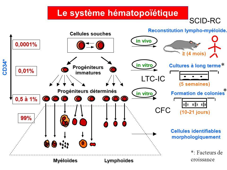 Cultures à long terme (5 semaines) Formation de colonies (10-21 jours) in vitro in vivo Reconstitution lympho-myéloïde. Cellules souches Progéniteurs