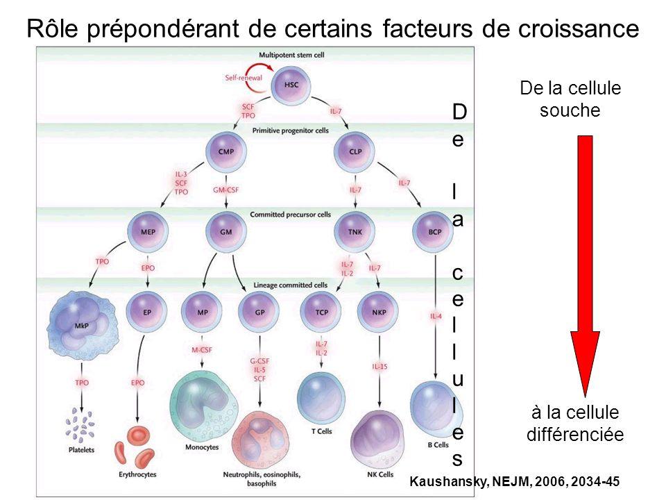 Kaushansky, NEJM, 2006, 2034-45 De la cellules soucheDe la cellules souche De la cellule souche à la cellule différenciée Rôle prépondérant de certain