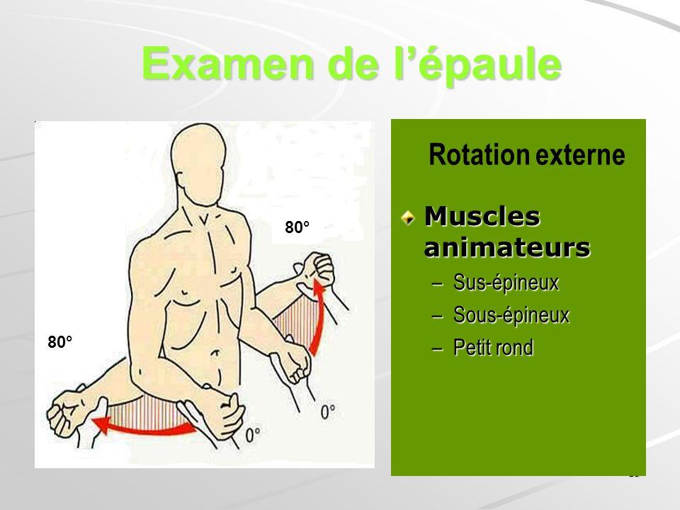 18 Muscles animateurs –Sus-épineux –Sous-épineux –Petit rond Rotation externe 80° Examen de lépaule