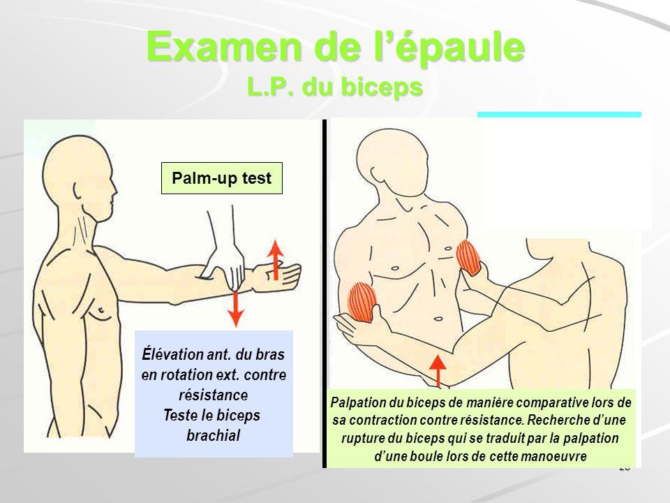 28 Examen de lépaule L.P. du biceps Palpation du biceps de manière comparative lors de sa contraction contre résistance. Recherche dune rupture du bic