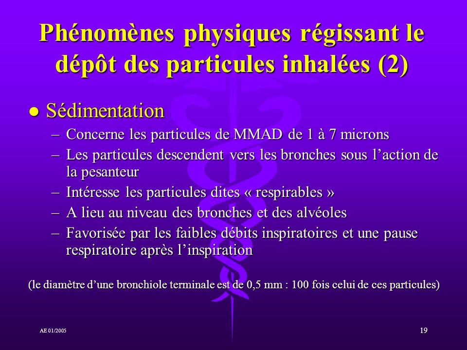 19 AE 01/2005 Phénomènes physiques régissant le dépôt des particules inhalées (2) l Sédimentation –Concerne les particules de MMAD de 1 à 7 microns –Les particules descendent vers les bronches sous laction de la pesanteur –Intéresse les particules dites « respirables » –A lieu au niveau des bronches et des alvéoles –Favorisée par les faibles débits inspiratoires et une pause respiratoire après linspiration (le diamètre dune bronchiole terminale est de 0,5 mm : 100 fois celui de ces particules)