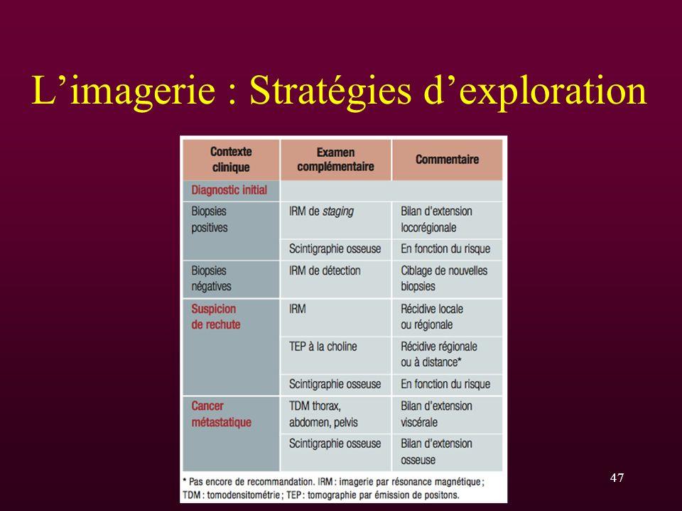 Limagerie : Stratégies dexploration 47