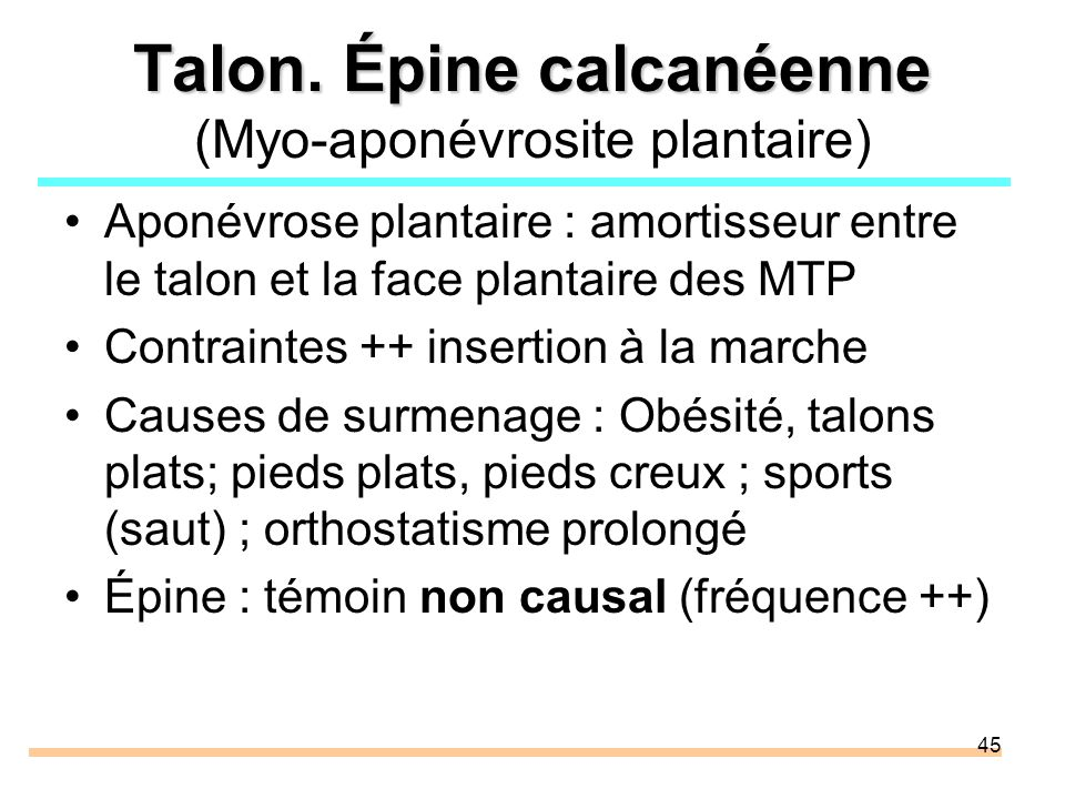 45 Talon. Épine calcanéenne Talon. Épine calcanéenne (Myo-aponévrosite plantaire) Aponévrose plantaire : amortisseur entre le talon et la face plantai