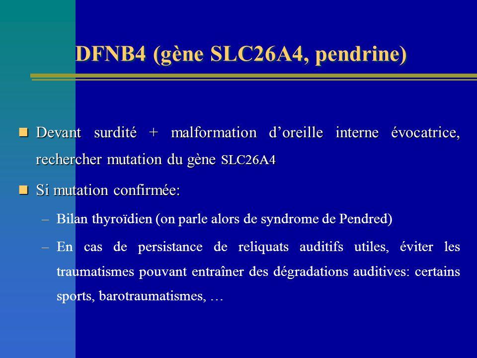 Devant surdité + malformation doreille interne évocatrice, rechercher mutation du gène SLC26A4 Devant surdité + malformation doreille interne évocatri