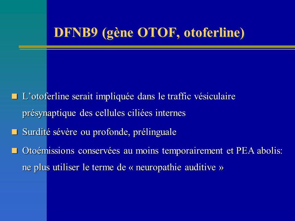 DFNB9 (gène OTOF, otoferline) Lotoferline serait impliquée dans le traffic vésiculaire présynaptique des cellules ciliées internes Lotoferline serait