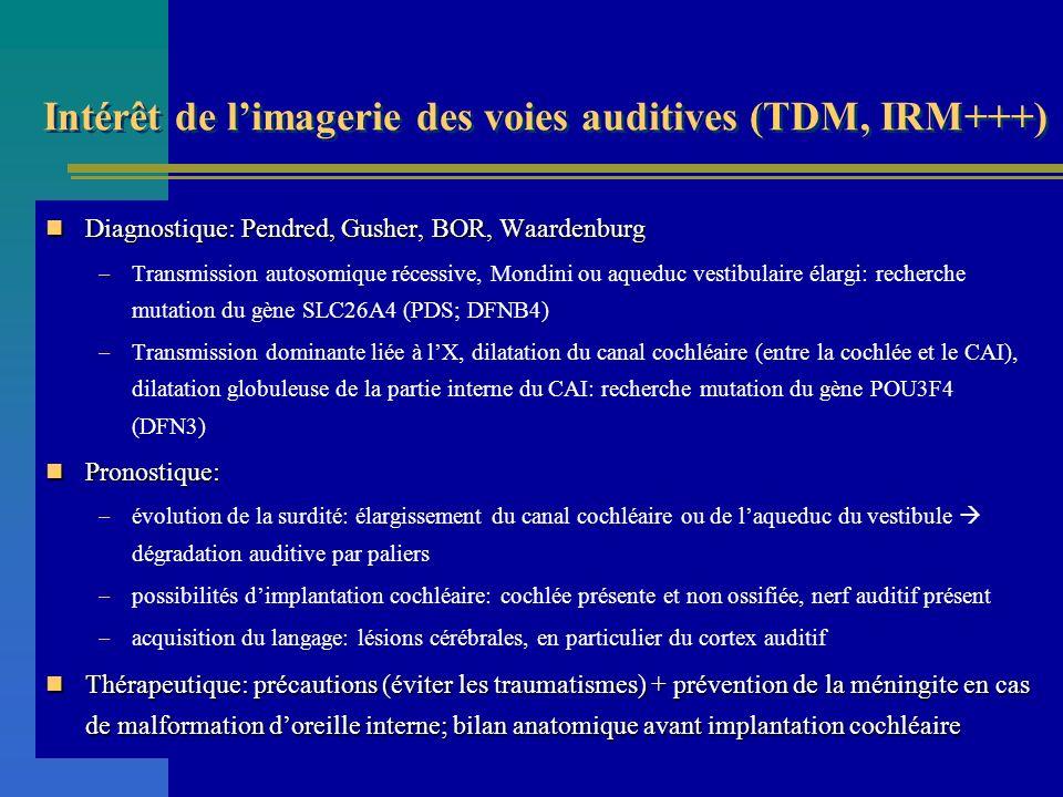 Intérêt de limagerie des voies auditives (TDM, IRM+++) Diagnostique: Pendred, Gusher, BOR, Waardenburg Diagnostique: Pendred, Gusher, BOR, Waardenburg