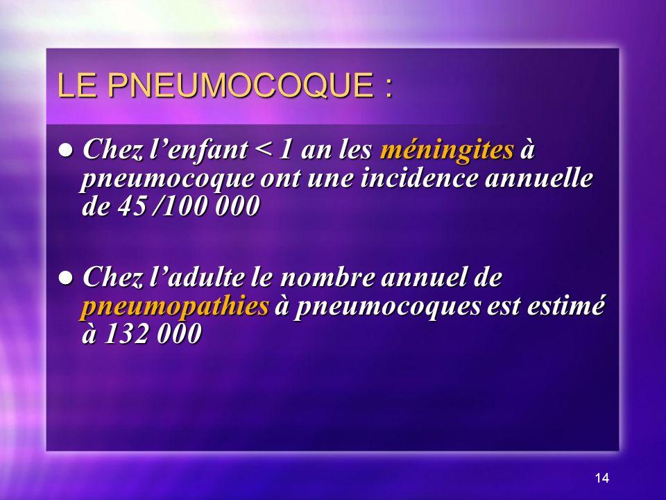 14 LE PNEUMOCOQUE : Chez lenfant < 1 an les méningites à pneumocoque ont une incidence annuelle de 45 /100 000 Chez lenfant < 1 an les méningites à pneumocoque ont une incidence annuelle de 45 /100 000 Chez ladulte le nombre annuel de pneumopathies à pneumocoques est estimé à 132 000 Chez ladulte le nombre annuel de pneumopathies à pneumocoques est estimé à 132 000