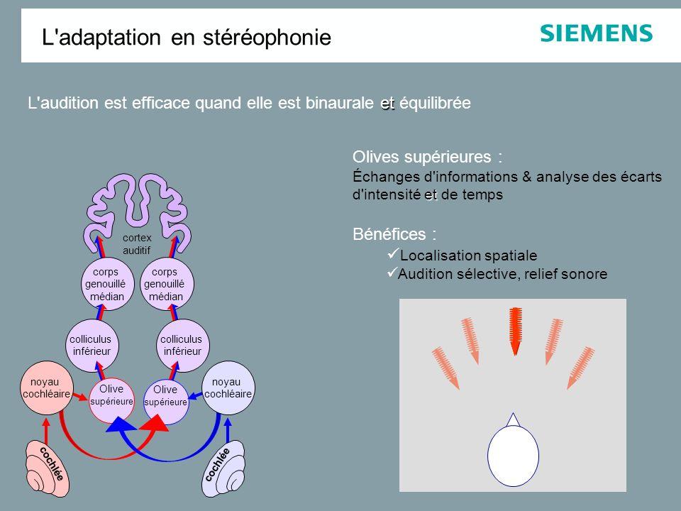 Le système auditif est conçu pour interpréter efficacement les informations sonores quand elles sont binaurales et et équilibrées L'adaptation en stér