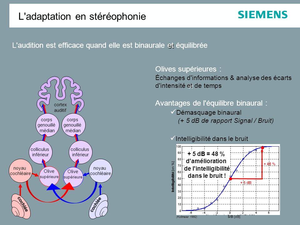 corps genouillé médian cortex auditif colliculus inférieur Olive supérieure cochlée noyau cochléaire et L'audition est efficace quand elle est binaura
