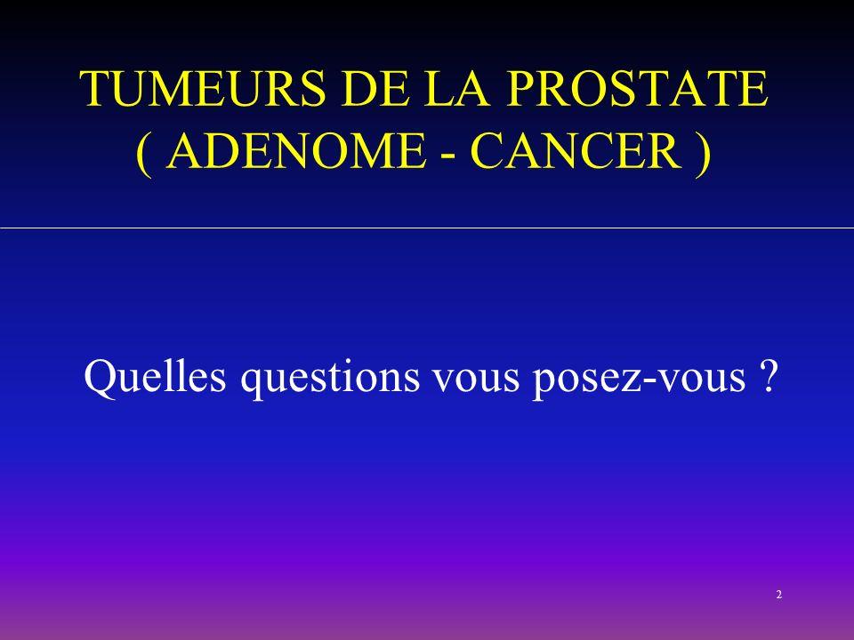 2 TUMEURS DE LA PROSTATE ( ADENOME - CANCER ) Quelles questions vous posez-vous ?