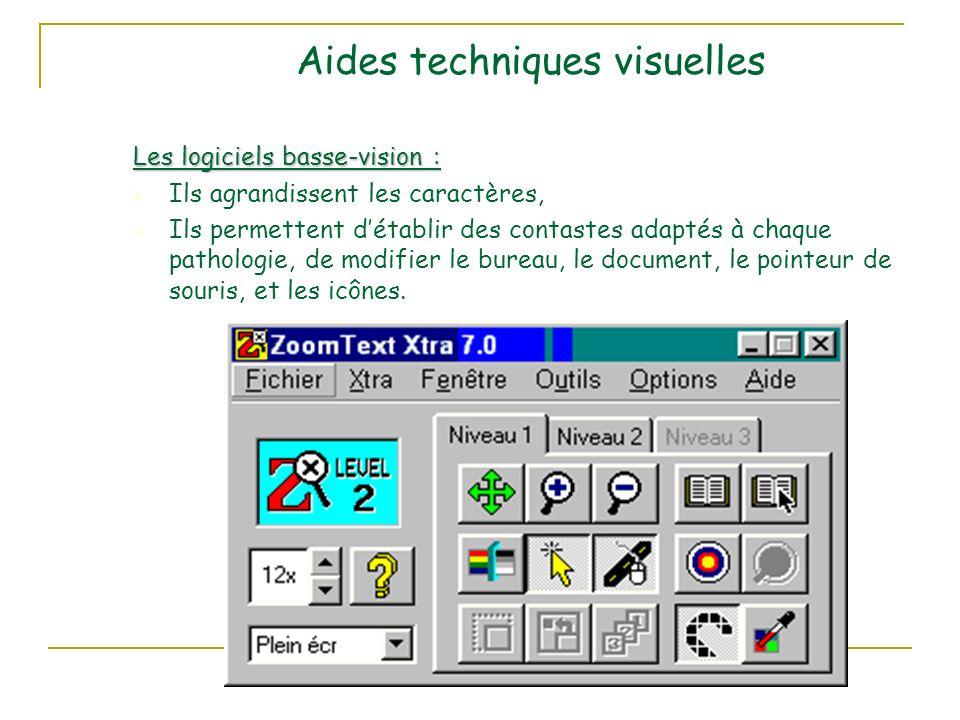 Aides techniques visuelles Les logiciels basse-vision : Ils agrandissent les caractères, Ils permettent détablir des contastes adaptés à chaque pathologie, de modifier le bureau, le document, le pointeur de souris, et les icônes.
