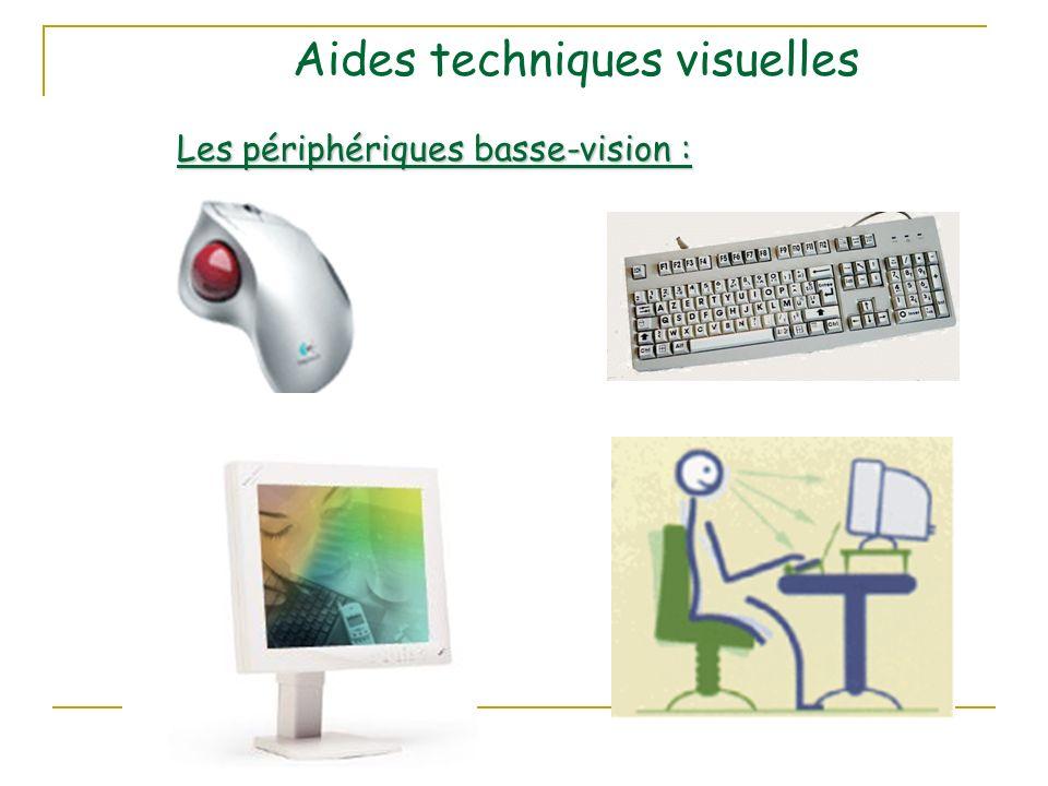 Aides techniques visuelles Les périphériques basse-vision :