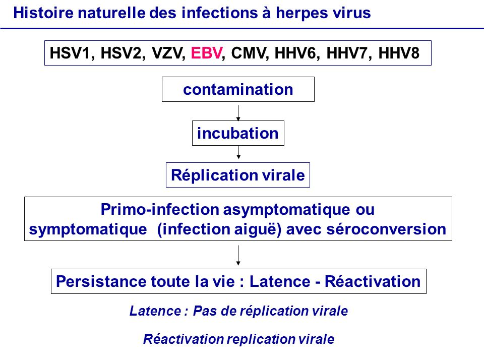 contamination incubation Primo-infection asymptomatique ou symptomatique (infection aiguë) avec séroconversion Persistance toute la vie : Latence - Ré