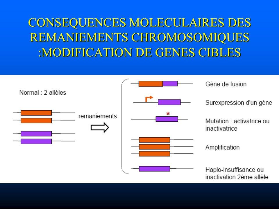 CONSEQUENCES MOLECULAIRES DES REMANIEMENTS CHROMOSOMIQUES :MODIFICATION DE GENES CIBLES