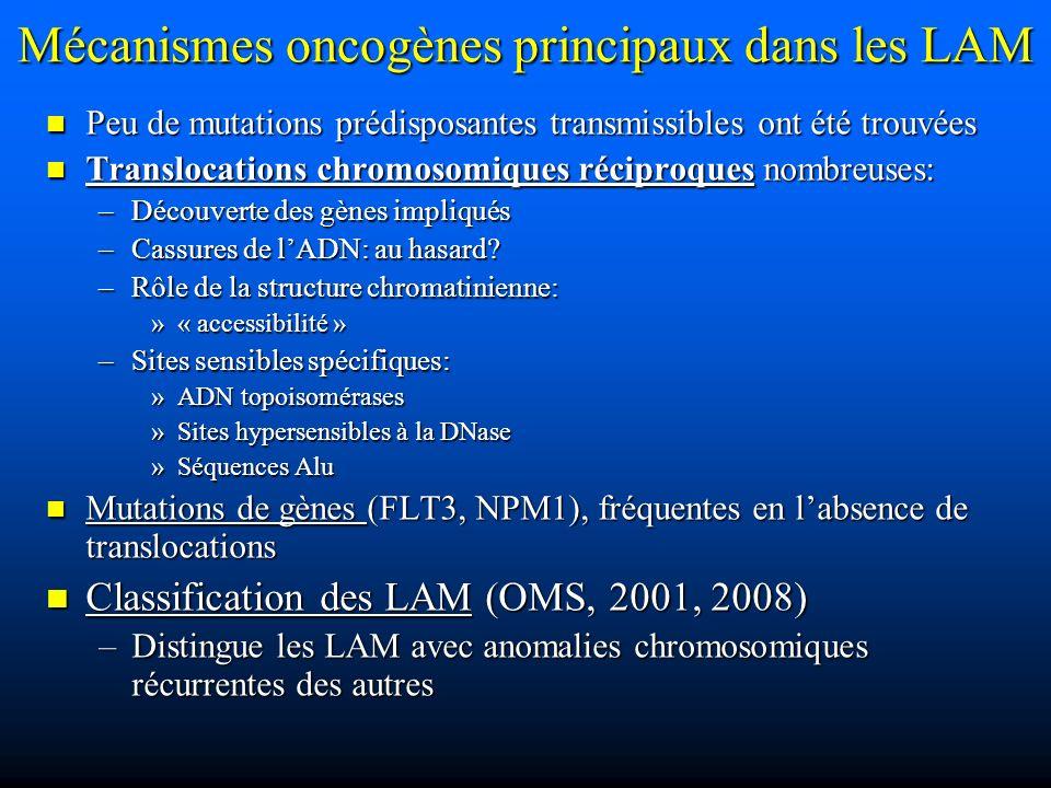 Mécanismes oncogènes principaux dans les LAM Peu de mutations prédisposantes transmissibles ont été trouvées Peu de mutations prédisposantes transmiss