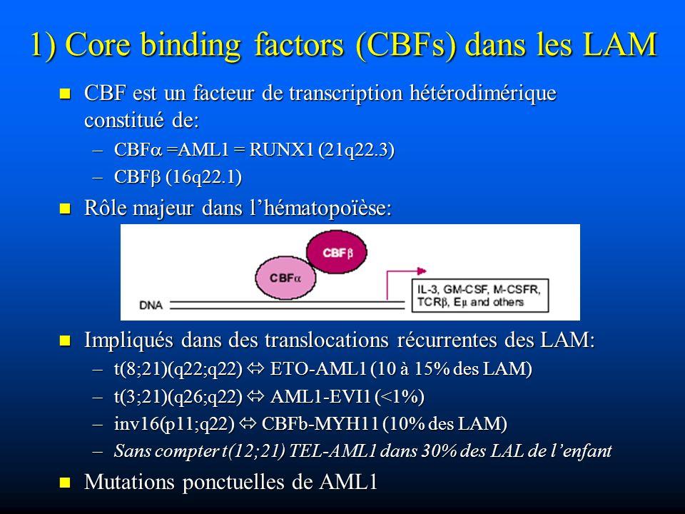 1) Core binding factors (CBFs) dans les LAM CBF est un facteur de transcription hétérodimérique constitué de: CBF est un facteur de transcription hété