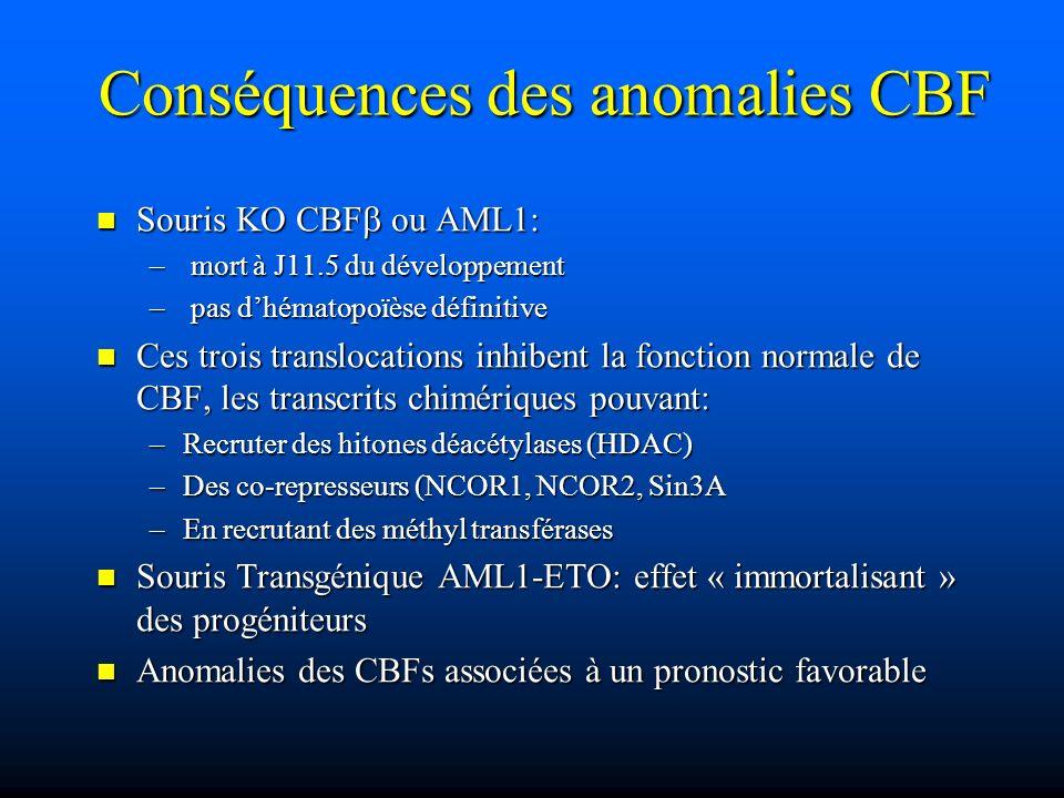 Conséquences des anomalies CBF Souris KO CBF ou AML1: Souris KO CBF ou AML1: – mort à J11.5 du développement – pas dhématopoïèse définitive Ces trois