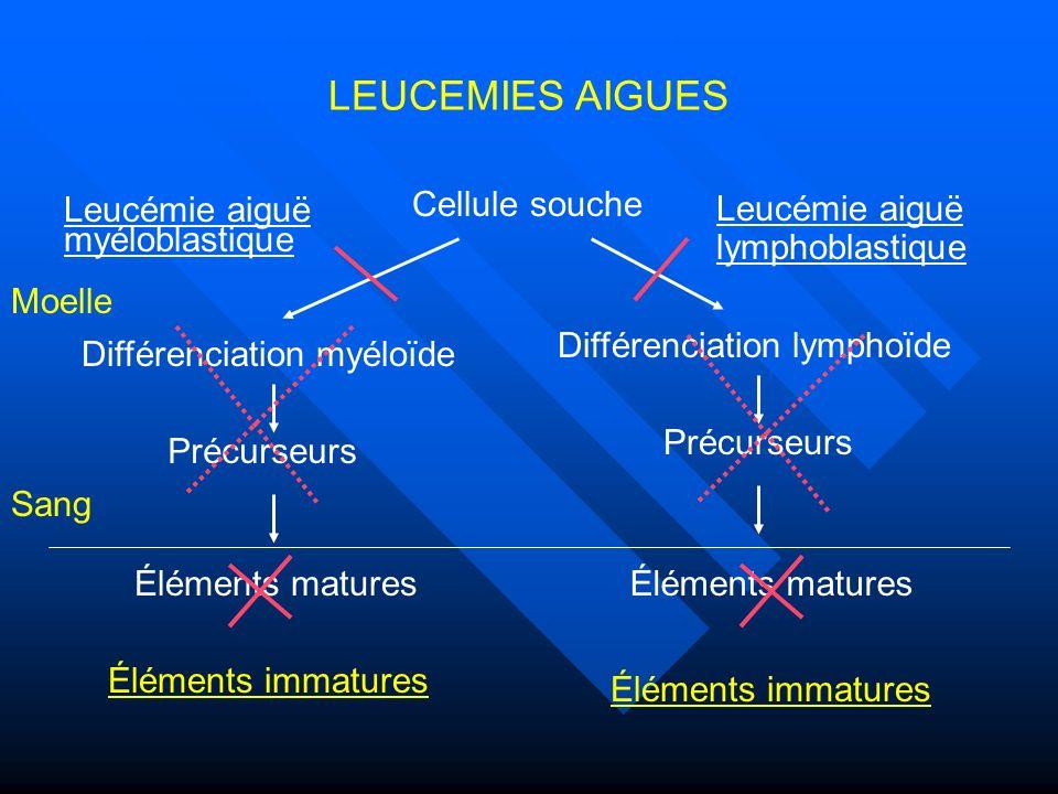 La cellule souche leucémique (CSL) Toutes les cellules leucémiques ne sont pas en cycle (1970, Clarkson) Toutes les cellules leucémiques ne sont pas en cycle (1970, Clarkson) Une fraction minoritaire CD34+ CD38- isolées de LAM peut donner des LAM dans des modèles de transplantation multiple Une fraction minoritaire CD34+ CD38- isolées de LAM peut donner des LAM dans des modèles de transplantation multiple –Expriment des antigènes différents de la CSH normales Il existe des arguments en faveur: Il existe des arguments en faveur: –De cellules souches primitives leucémiques –De progéniteurs ayant ré-acquis des propriétés dauto- renouvellement –De cellules intermédiaires Rôle de lenvironnement probable (réactions immunes, infections…) Rôle de lenvironnement probable (réactions immunes, infections…)