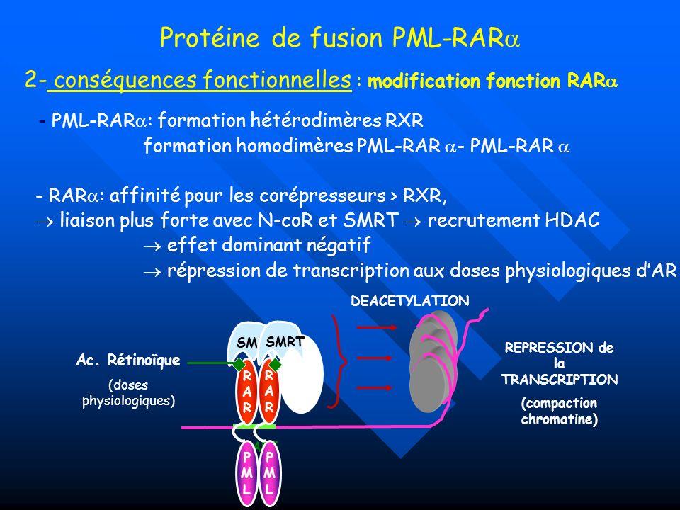 - PML-RAR : formation hétérodimères RXR formation homodimères PML-RAR - PML-RAR - RAR : affinité pour les corépresseurs > RXR, liaison plus forte avec