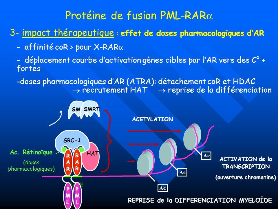 Protéine de fusion PML-RAR 3- impact thérapeutique : effet de doses pharmacologiques dAR - affinité coR > pour X-RAR - déplacement courbe dactivation