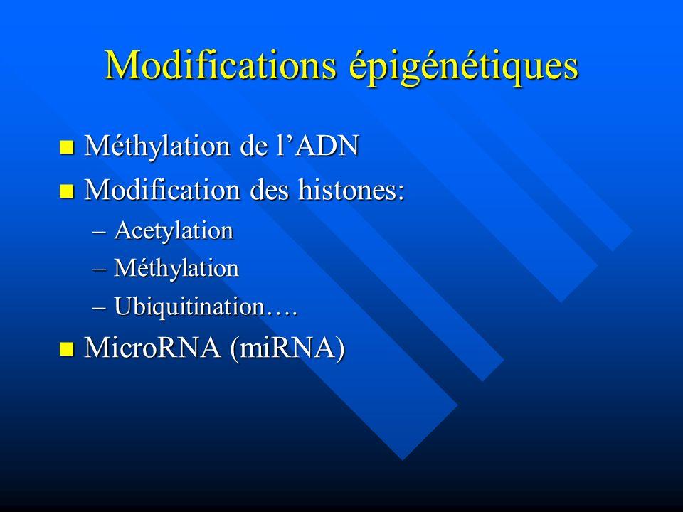Modifications épigénétiques Méthylation de lADN Méthylation de lADN Modification des histones: Modification des histones: –Acetylation –Méthylation –U