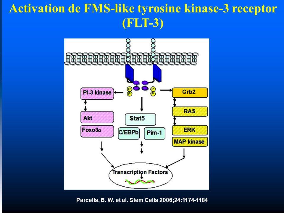 Parcells, B. W. et al. Stem Cells 2006;24:1174-1184 Activation de FMS-like tyrosine kinase-3 receptor (FLT-3)