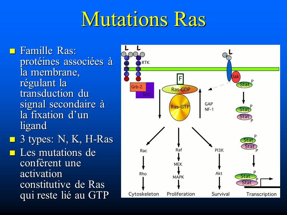 Mutations Ras Famille Ras: protéines associées à la membrane, régulant la transduction du signal secondaire à la fixation dun ligand Famille Ras: prot