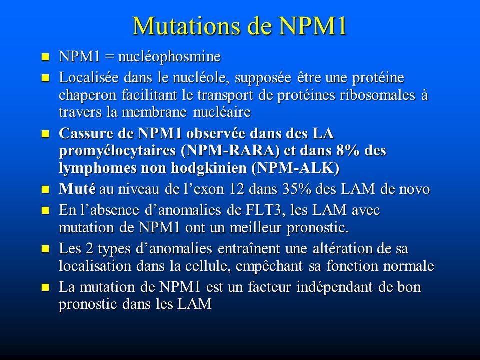 Mutations de NPM1 NPM1 = nucléophosmine NPM1 = nucléophosmine Localisée dans le nucléole, supposée être une protéine chaperon facilitant le transport
