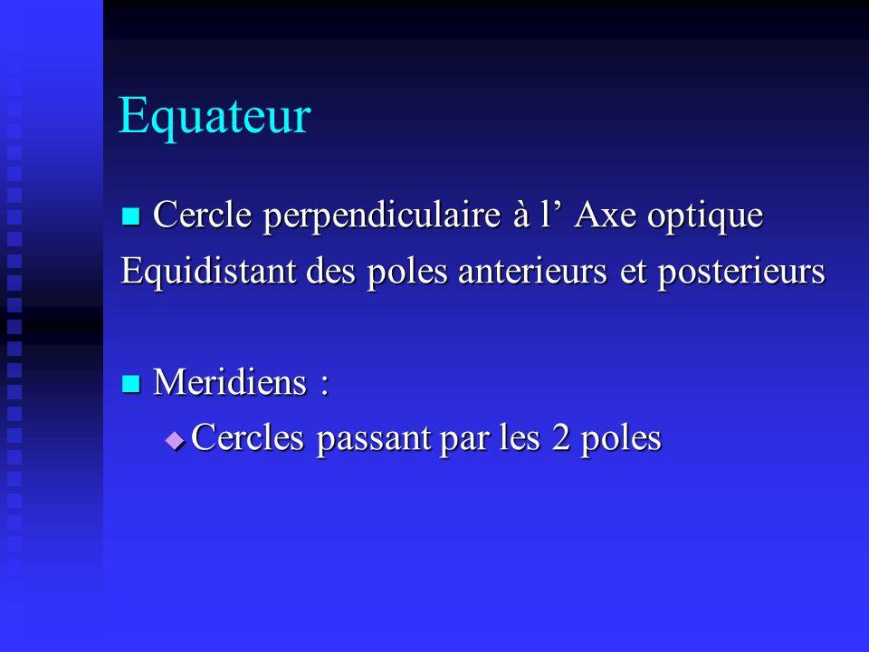 Equateur Cercle perpendiculaire à l Axe optique Cercle perpendiculaire à l Axe optique Equidistant des poles anterieurs et posterieurs Meridiens : Mer