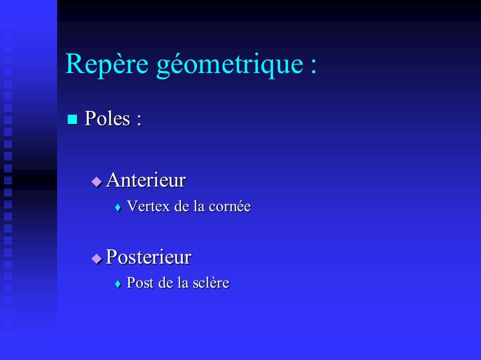 Repère géometrique : Poles : Poles : Anterieur Anterieur Vertex de la cornée Vertex de la cornée Posterieur Posterieur Post de la sclère Post de la sc