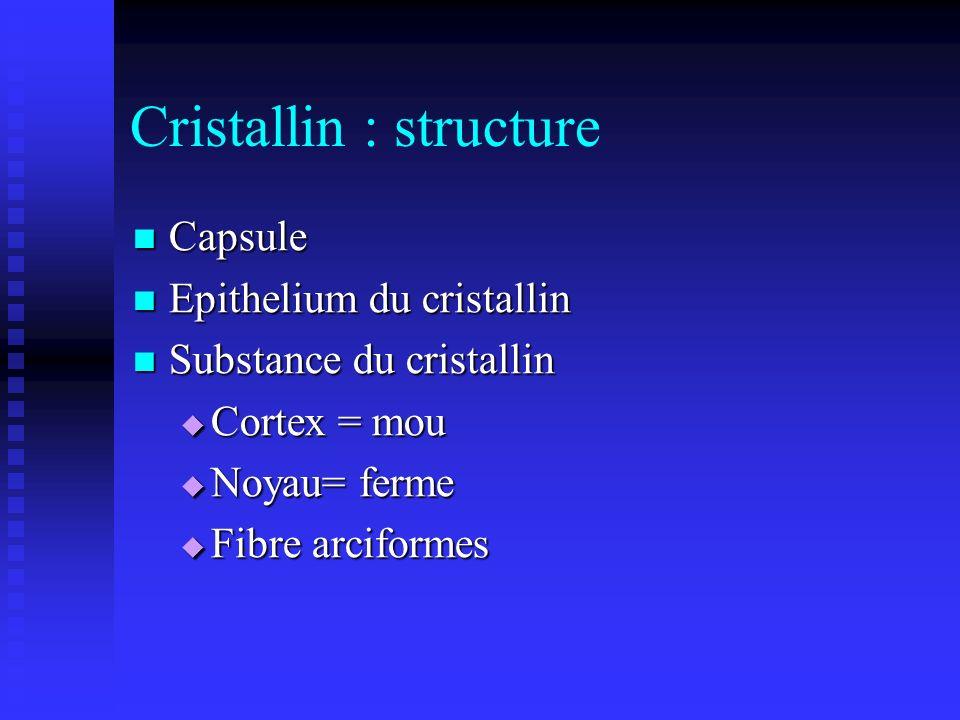 Cristallin : structure Capsule Capsule Epithelium du cristallin Epithelium du cristallin Substance du cristallin Substance du cristallin Cortex = mou