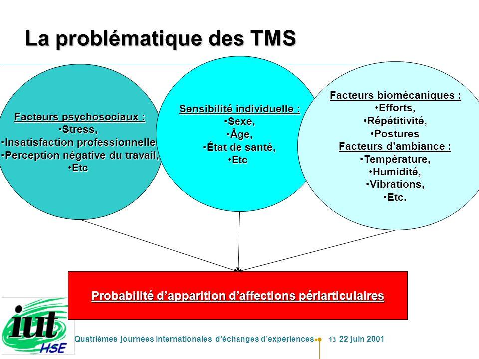 13 Quatrièmes journées internationales déchanges dexpériences 22 juin 2001 La problématique des TMS Facteurs psychosociaux : Stress,Stress, Insatisfac