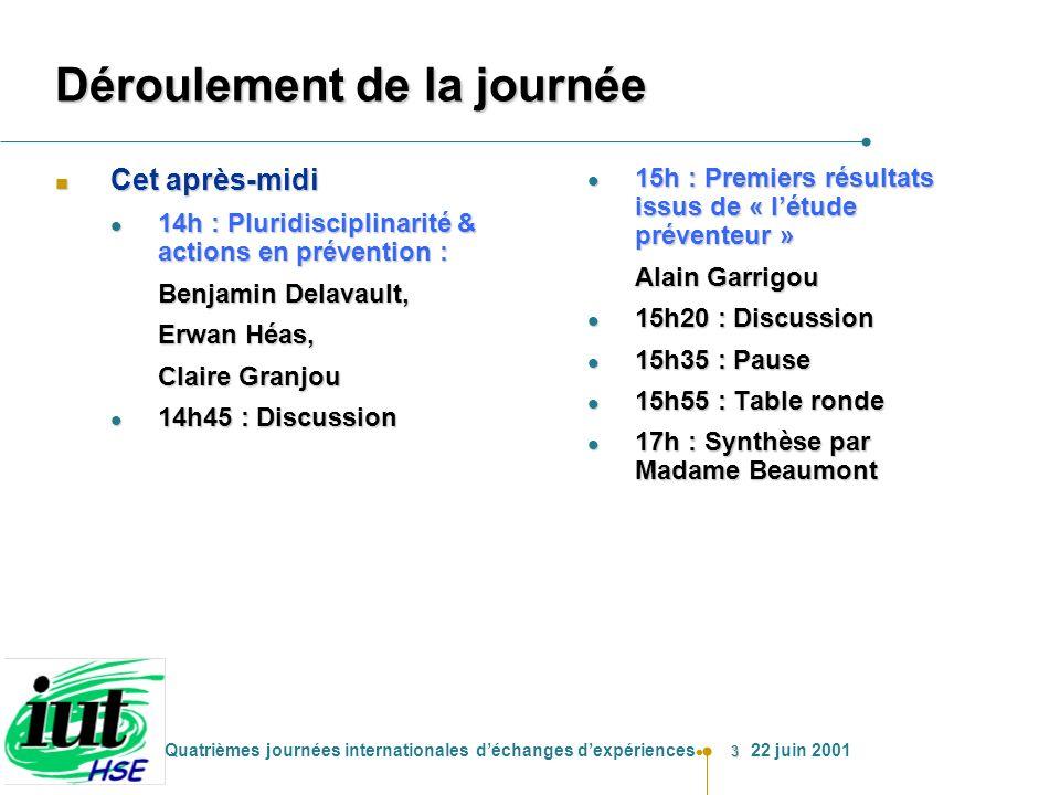 3 Quatrièmes journées internationales déchanges dexpériences 22 juin 2001 Déroulement de la journée n Cet après-midi l 14h : Pluridisciplinarité & act