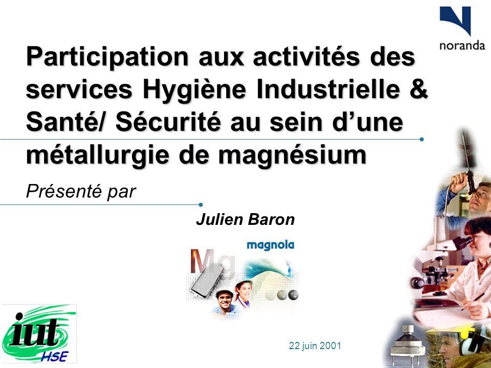 Présenté par 22 juin 2001 Participation aux activités des services Hygiène Industrielle & Santé/ Sécurité au sein dune métallurgie de magnésium Julien
