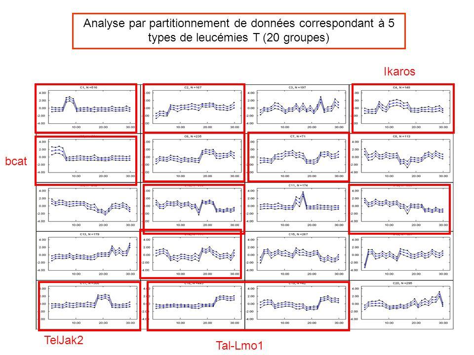 Ikaros TelJak2 Tal-Lmo1 bcat Analyse par partitionnement de données correspondant à 5 types de leucémies T (20 groupes)