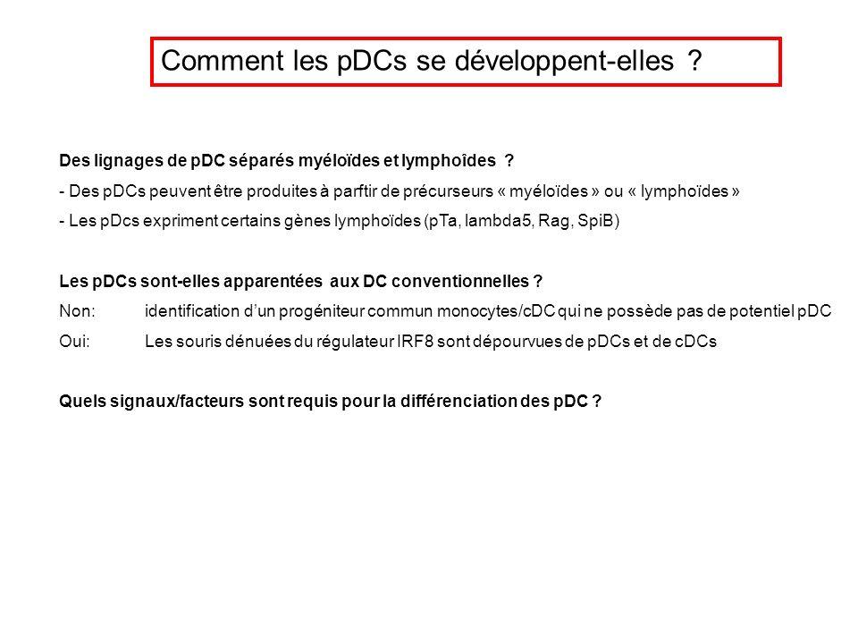 Comment les pDCs se développent-elles ? Des lignages de pDC séparés myéloïdes et lymphoîdes ? - Des pDCs peuvent être produites à parftir de précurseu
