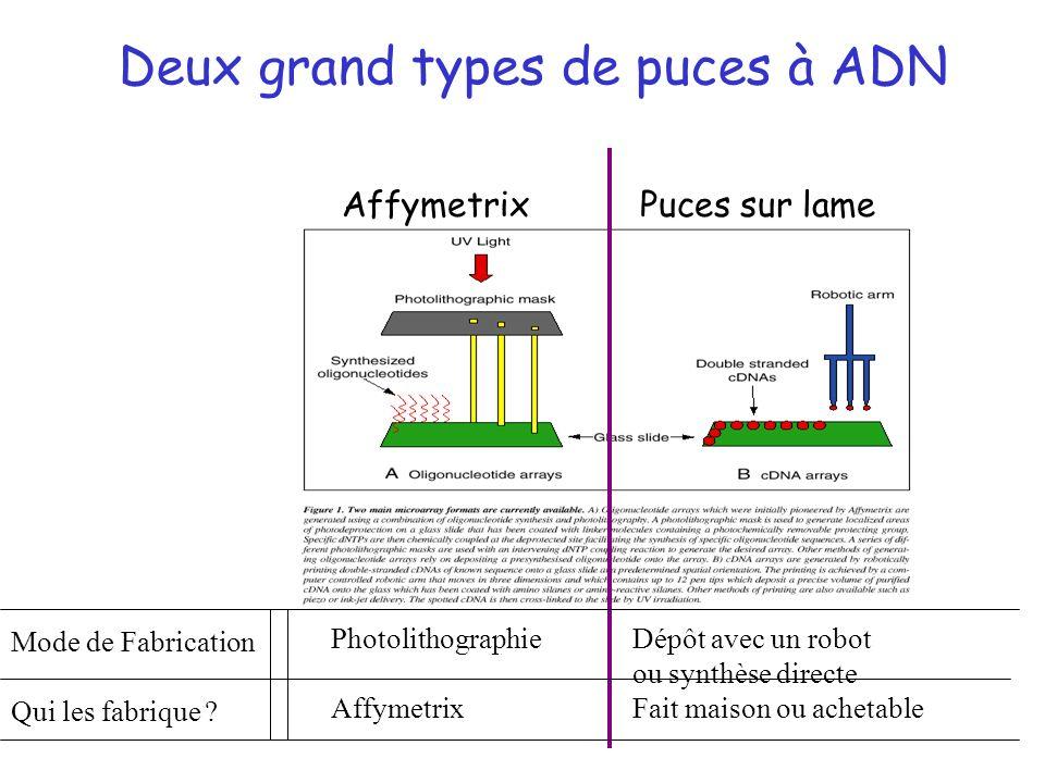 Deux grand types de puces à ADN AffymetrixPuces sur lame Photolithographie Affymetrix Dépôt avec un robot ou synthèse directe Fait maison ou achetable
