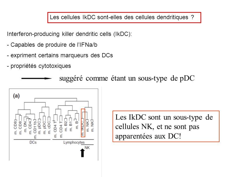 Les cellules IkDC sont-elles des cellules dendritiques ? Interferon-producing killer dendritic cells (IkDC): - Capables de produire de lIFNa/b - expri