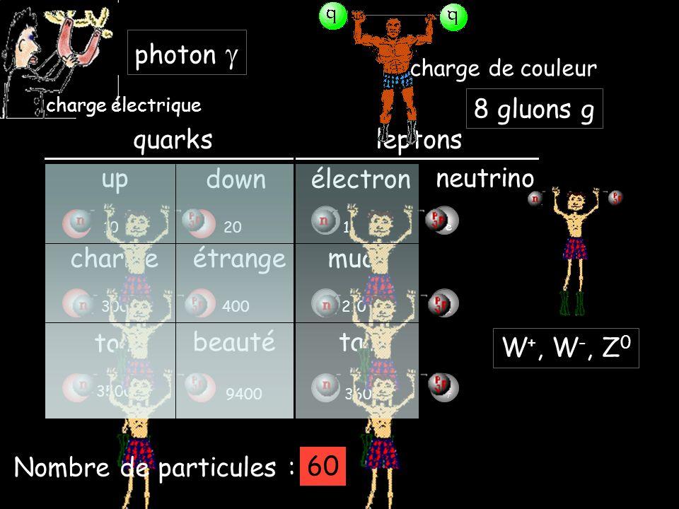 e-e- e quarks up downélectron neutrino leptons charmeétrange top beauté - muon - tau ud cs tb 3600 1020 4003000 9400 350000 1 210 charge électrique photon Nombre de particules : 4849 charge de couleur 8 gluons g 57 W +, W -, Z 0 60