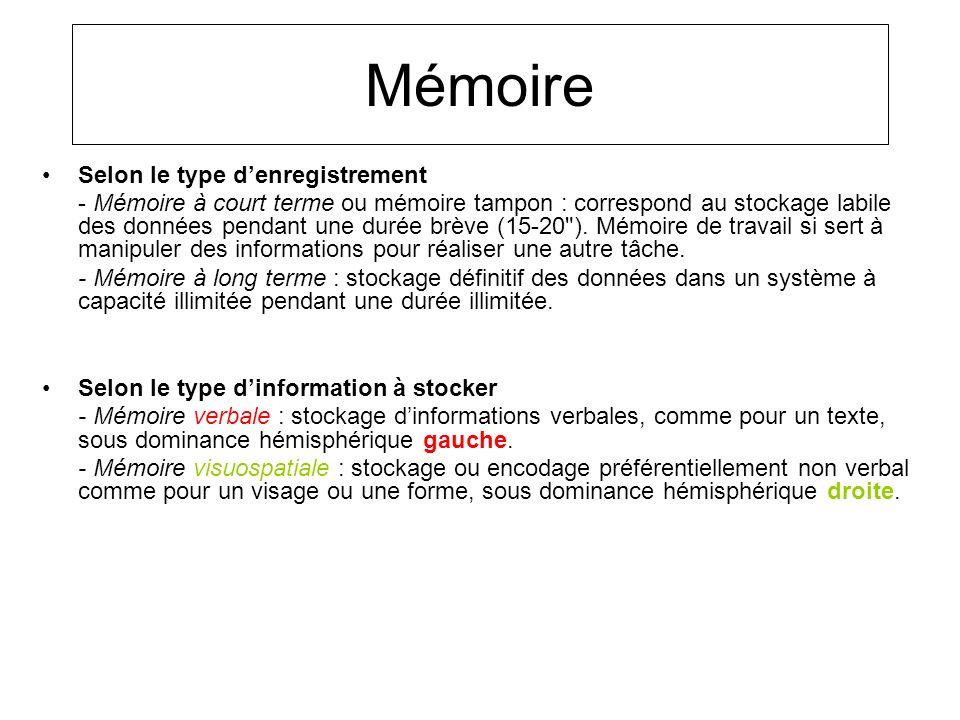 Mémoire Selon le type denregistrement - Mémoire à court terme ou mémoire tampon : correspond au stockage labile des données pendant une durée brève (1