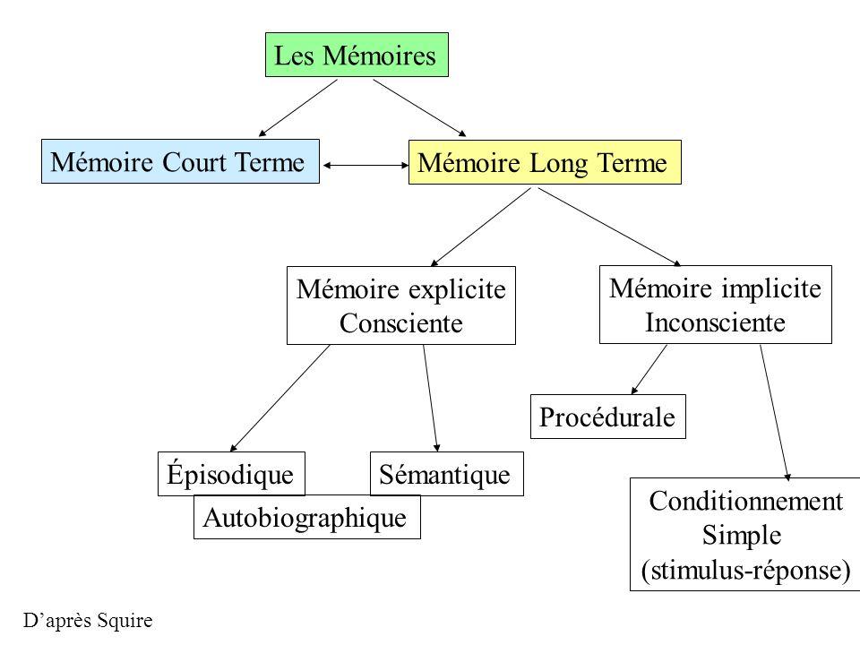 Mémoire Court Terme Mémoire Long Terme Mémoire explicite Consciente Mémoire implicite Inconsciente ÉpisodiqueSémantique Procédurale Conditionnement Si